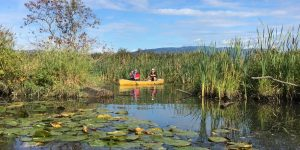 Katzie Slough Canoe Tour